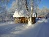 Tammiku-talv-024